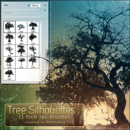 tree-silhouettes