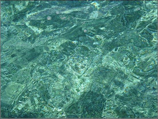 water-texture[3]