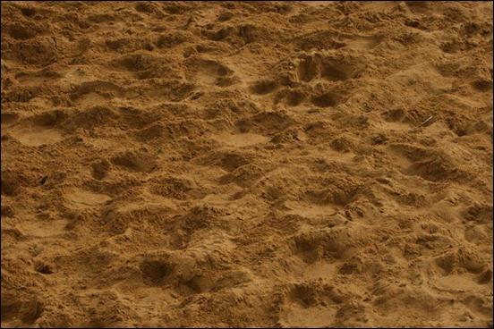 sand-texture[7]
