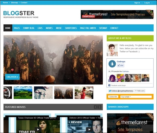 Blogster is a fully customizable theme