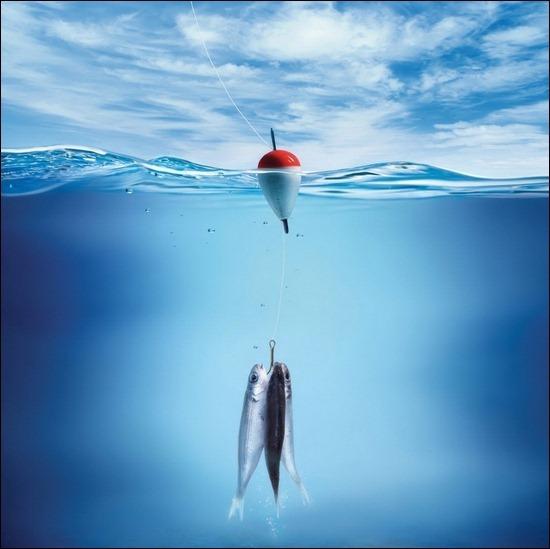 fishes-underwater