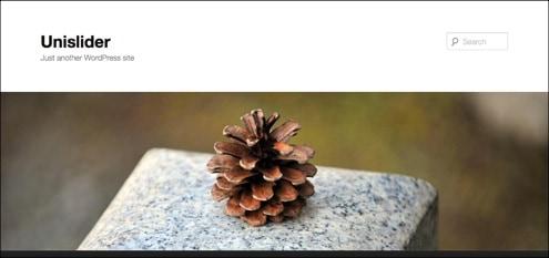 20+ Great WordPress Slideshow Plugins