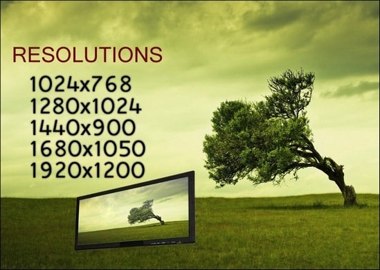 45+ Lovely Free Tree Wallpapers – Need Some Nature Inspiration