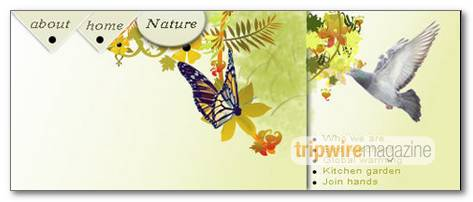 design-nature-theme-header-for-web-site