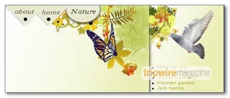design-nature-theme-header-for-web-site
