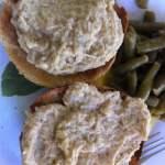 Shredded Chicken and Gravy