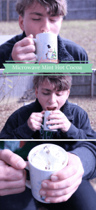 Single serving microwave mint hot cocoa recipe