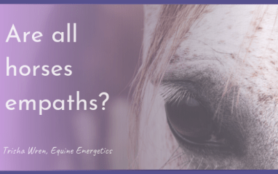 Are horses empaths?