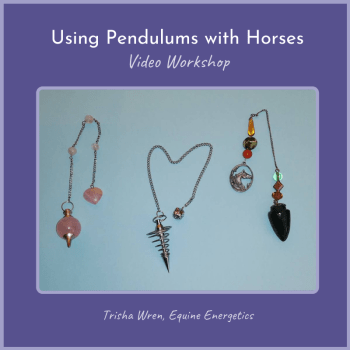 using pendulums with horses