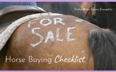Horse Buying Checklist