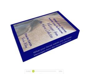 horse oracle cards box