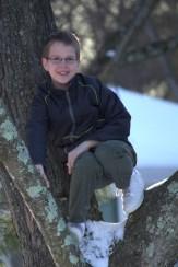 Boy in tree.