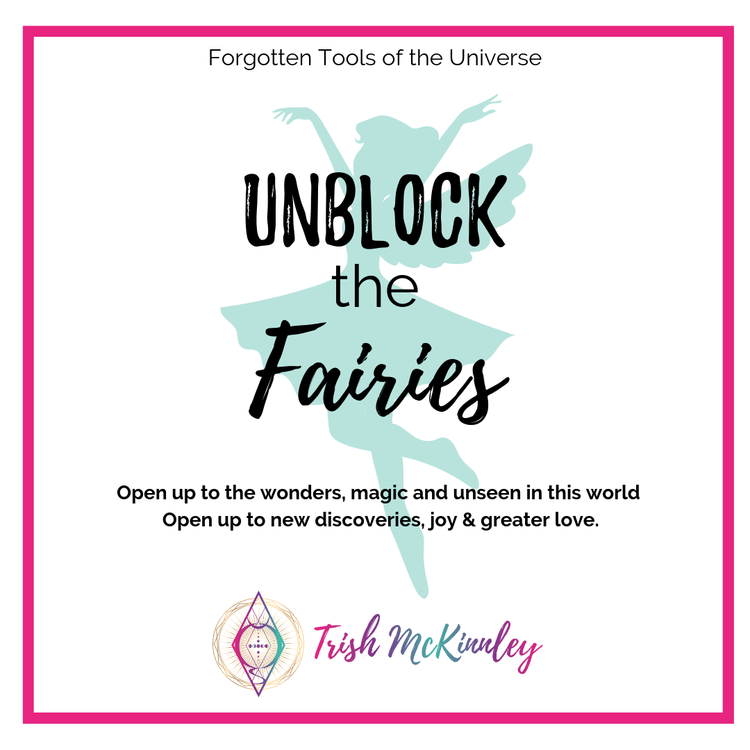 Unblock the Fairies workbook