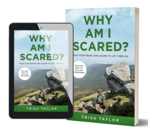 3d image of print and ereader book cover of Why Am I Scared