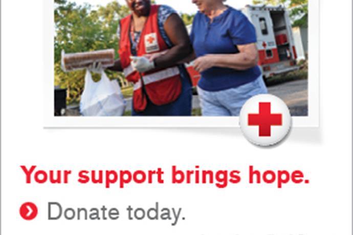 Red Cross Action Alert_6489846745278073874
