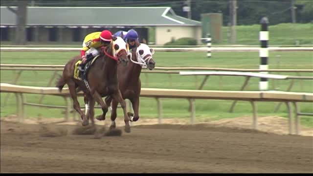Sunday Spotlight- Handicapping the Horses_20150817031007