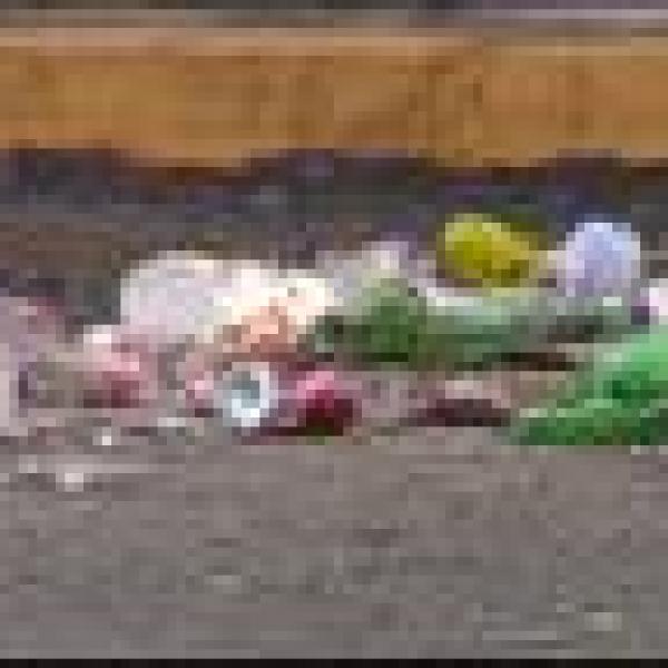 fall fest clean up_1444607040326.jpg