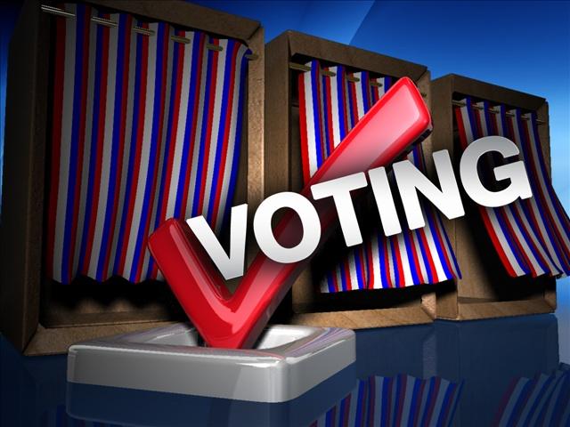 voting3_1448434624393.jpg