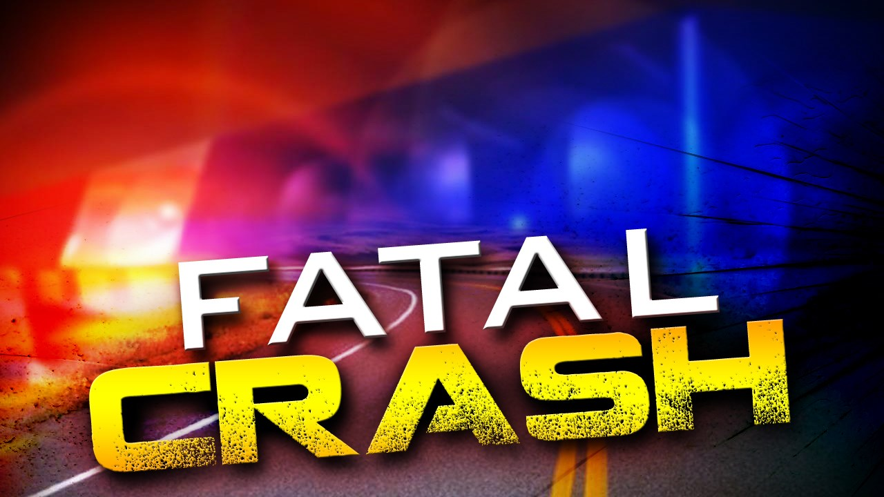 Fatal Crash Police Lights