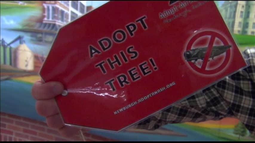Adopt A Tree Program_08036613-159532