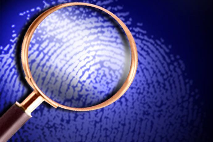 police investigation_-2972590693582289856