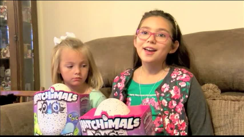 Sisters Raffle Hatchimals to Help Gatlinburg Victims_92023024