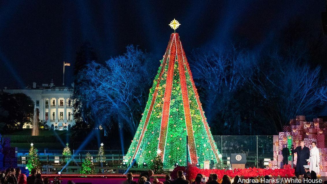 national christmas tree 2018_1545651721727.JPG.jpg