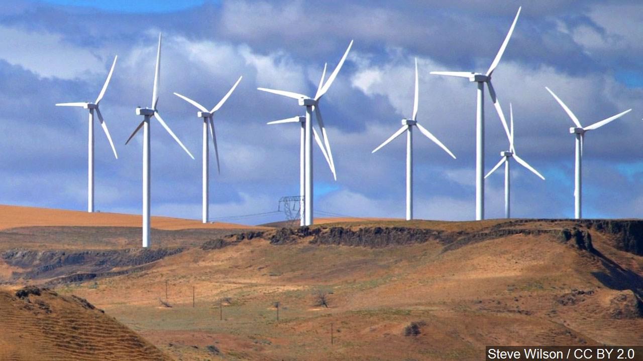 wind farm - steve wilson _1551789334446.jpg.jpg