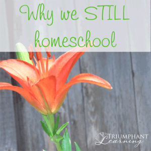 Why we still homeschool