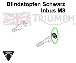 Triumph Bonneville Blindstopfen Schwarz Bonneville T100