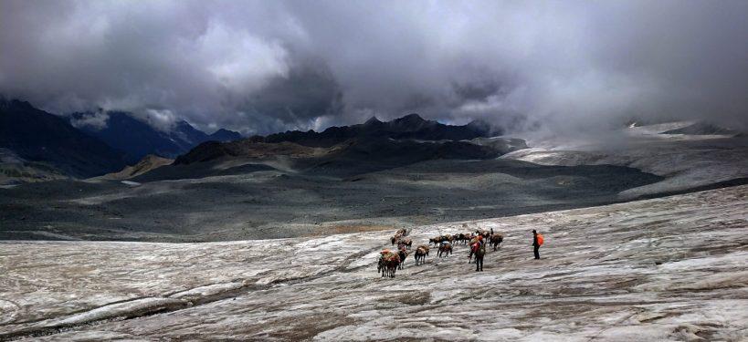 Mule Train and Glacier Stretch