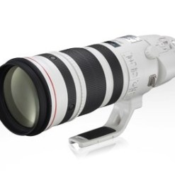 ZOOM PHOTO CANON EF 200-400 MM F4L IS USM