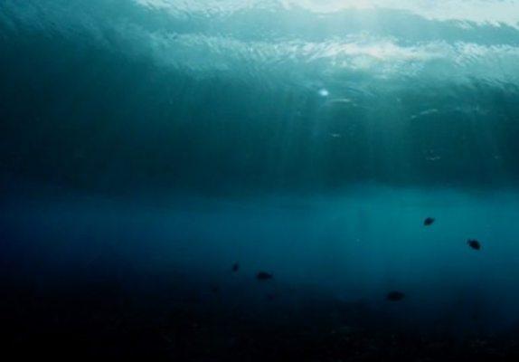 Water II, le nouveau chef d'oeuvre de Morgan Maassen