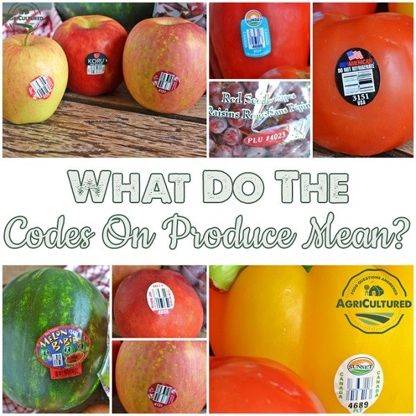 Why do fruits have labels