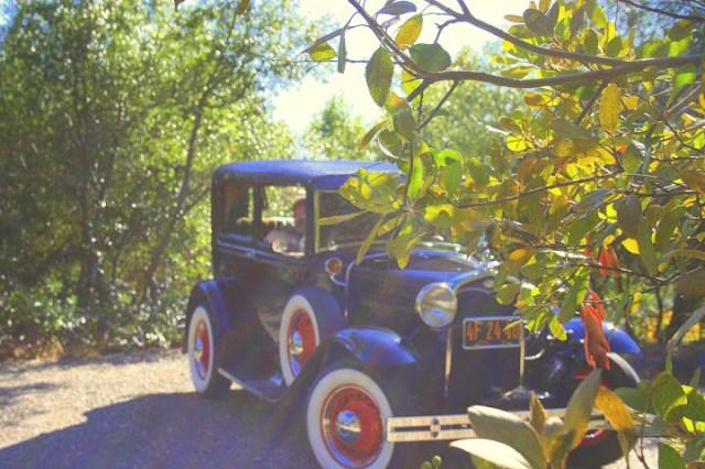 An Early Fall Car Tour