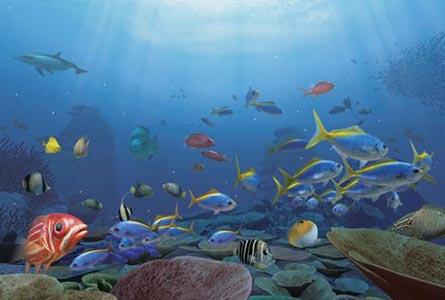 Aquanaut's Holiday Hidden Memories Review