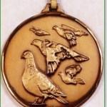Pigeon Medal 1