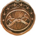 Martial Arts Medal 1