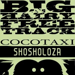 Cocotaxi - Shosholoza cover