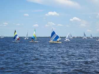 Small Sailboat Fleet
