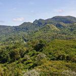 Sierra del Escambray Cuba