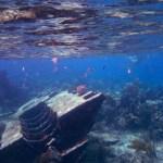 Cayo Guillermo underwater