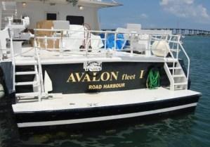 Diving tour in Luxury Yacht Avalon I in Jardines de la Reina a marine park of Cuba