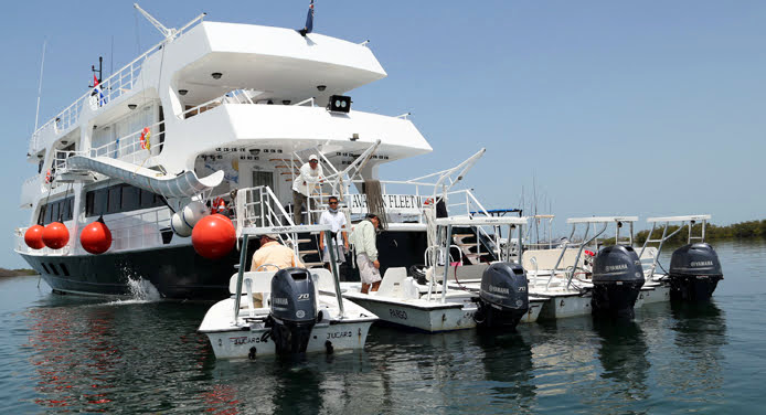 Diving Tour in Jardines de la Reina with Avalon II luxury yacht