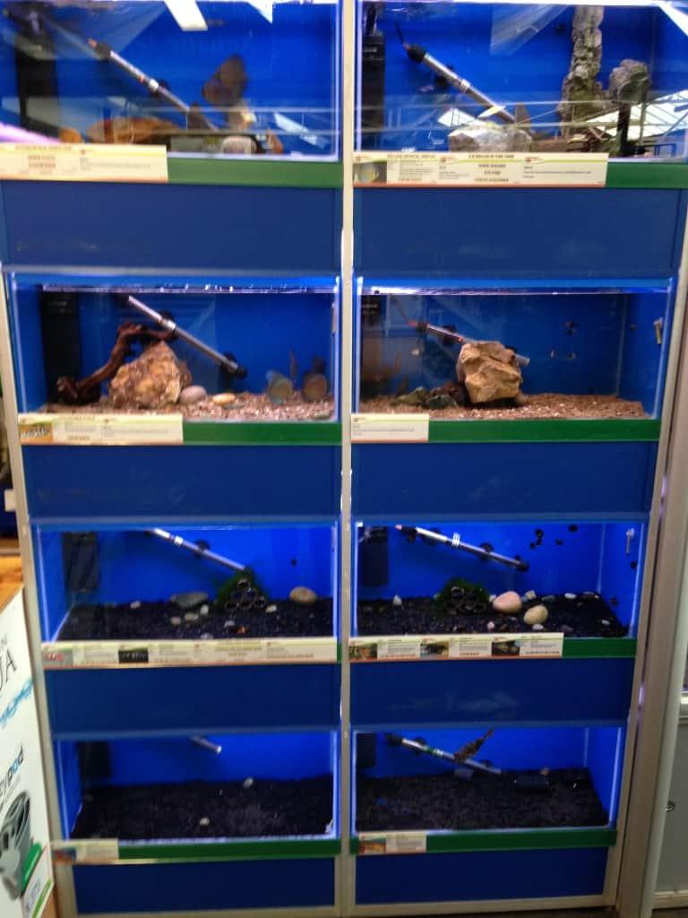 Fish Shop Leeds 10