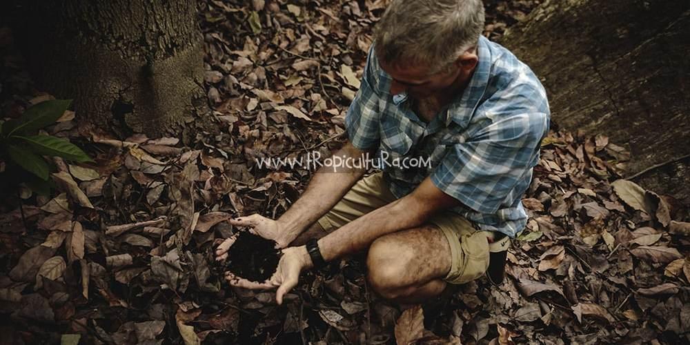 Tropicultura Tierra viva