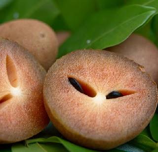 sapodilla-fruit-sapota
