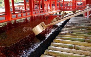 JAPÓN, DÍA 8: HIROSHIMA - ISLA MIYAJIMA - KYOTO