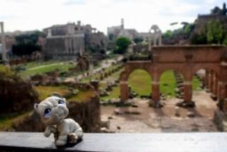 CONJUNTO MONUMENTAL Y FORO ROMANO