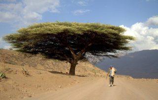 ENTRE MEKELE Y LALIBELA. VIAJE A ETIOPÍA, DÍA 9
